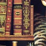 Buecher mit katze, libros