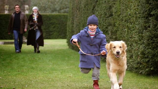 Fotogramas de la película After Thomas sobre un niño con autismo y su perro